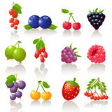 Berry set. Set of 12 glossy berry icons vector illustration