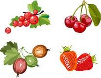 Berry set Stock Photos