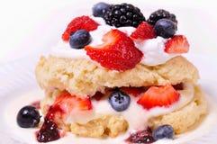 Berry shortcake stock image