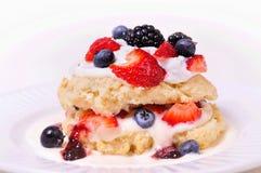 Berry shortcake Stock Photo