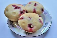 Berry Small Cupcakes lizenzfreie stockbilder