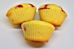 Berry Small Cupcakes stockfotos