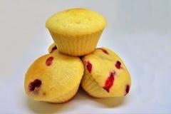 Berry Small Cupcakes stockfotografie