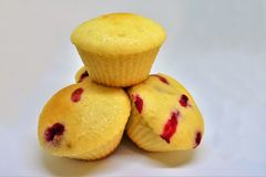 Berry Small Cupcakes stock photography