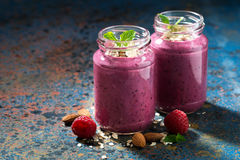 Berry smoothie in a bottle on a dark background, horizontal Stock Images