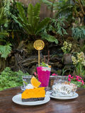 Berry smoothie and orange cake on wooden table. In garden Royalty Free Stock Photos