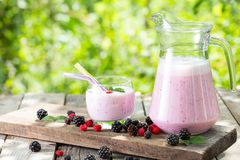 Berry smoothie or yogurt in a jug and glass with mint and berrie. S on the background of green foliage stock image