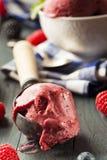Berry Sorbet Ice Cream orgânico caseiro imagens de stock royalty free