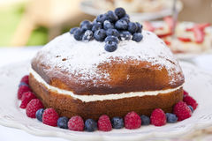 Berry Sponge Cake Stock Photo