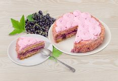 Berry sponge cake with currant and fresh currant berry. Partly cut round berry sponge cake with currant decorated with whipped cream, slice of cake on saucer Royalty Free Stock Photos