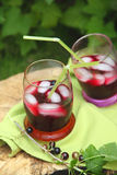 The berry spritzer cocktail Royalty Free Stock Images
