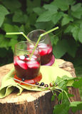 The berry spritzer cocktail Stock Images