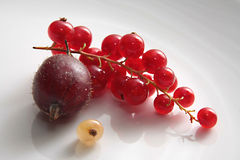Berry still life. Red currant, gooseberry  and golden currant on a grey background Stock Photo