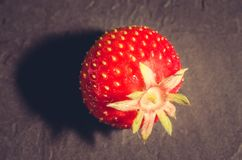 Berry of strawberry on black background/Strawberry. Fresh berry of strawberry on black background. Top view royalty free stock photo