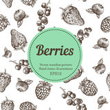 Berry, strawberry, blackberry, currant, raspberry, hand drawn seamless vector pattern. Nature organic illustration. Royalty Free Stock Images