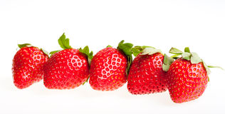 Berry of strawberry on white background. Stock Image
