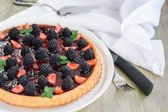 Berry Tart photos libres de droits