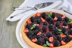 Berry Tart images libres de droits