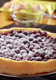 Berry tart. Tart with blueberry (Northern Highbush Blueberry) fruits and powdered sugar. Berries are red after baking Royalty Free Stock Photography