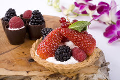 Berry Tart Stock Images