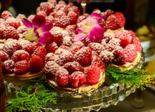 Berry tart. S served in bakery for christmas royalty free stock image