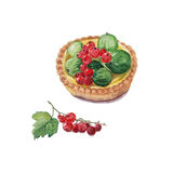 Berry tartlet with red currant and green gooseberries. Original illustration of berry tartlet with red currant and green gooseberries. Bright colors hand drawn Royalty Free Stock Image