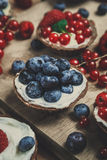 Berry tartlets Stock Images