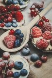 Berry tartlets in powdered sugar Stock Image
