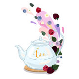 Berry tea Stock Image