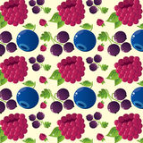 Berry texture. Seamless Juicy berry texture illustrated royalty free illustration