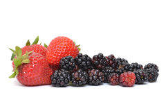 Berry Types Stock Photo