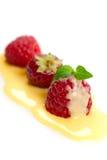 Berry in vanilla sauce Stock Image