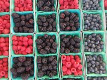 Berry varitety in baskets at Market. Berrys in baskets at farmers market Stock Images