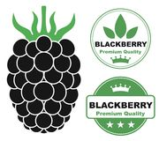 Berry. Vector illustration (EPS 10 Royalty Free Stock Photo