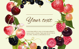 Berry. Vector mix berry banner. Design for tea, natural cosmetics, beauty store, dessert menu, organic health care products, perfume, aromatherapy. With place Royalty Free Stock Image