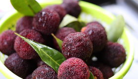 berry wax Стоковое Изображение