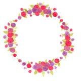 Berry Wreath bagas Bagas frescas Grinalda da aquarela Imagem de Stock Royalty Free
