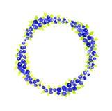 Berry Wreath bagas Bagas frescas Grinalda da aquarela Ilustração do vetor Imagens de Stock