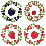 Berry wreath set Stock Images