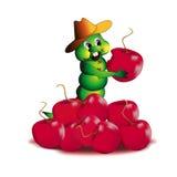 Berry wrecker. Royalty Free Stock Photos