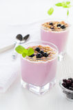 Berry yogurt with oat flakes Stock Photography