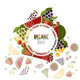 Berryes organici dell'etichetta su un fondo bianco illustrazione vettoriale