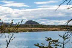 Berryhill från det Berryhill dammet, Gros Morne National Park, Newfoun arkivbild
