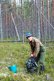 berrying在森林里的老人 库存图片