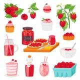 berrying新鲜的汁液的莓传染媒介成熟红色莓果或水多的果酱和甜点心蛋糕或者杯形蛋糕与冰淇凌 皇族释放例证