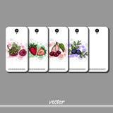 BerryPhone Royaltyfri Foto