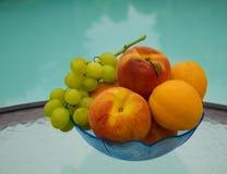 Berrys από τη λίμνη swimmimg Στοκ εικόνα με δικαίωμα ελεύθερης χρήσης