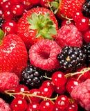 Berrys Stock Image
