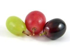 Berrys de la uva Imagenes de archivo