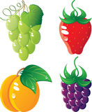 Berrys icon set. Ripe fruit icon set.  Isolated on a white background. Vector will be aditional Royalty Free Stock Photos